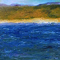 Abstract Shoreline by Michelle Calkins
