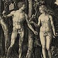 Adam And Eve In The Garden Of Eden - Albrecht Durer 1504 by Daniel Hagerman
