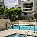 Afternoon Swim Palm Springs by William Dey