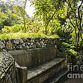 Alameda Gardens Stone Bench