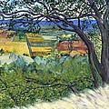 Alexander Valley Vinyards by Asha Carolyn Young