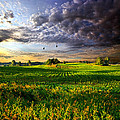 All I Need by Phil Koch