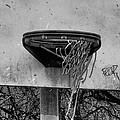 All Net by Bill Cannon
