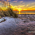 Ambience Of The Gulf by Marvin Spates