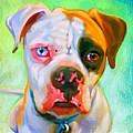 American Bulldog Art by Iain McDonald