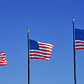 American Flags - Navy Pier Chicago by Christine Till