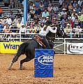 American Rodeo Female Barrel Racer Dark Horse Iv by Sally Rockefeller