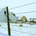 Amish Farm In Winter by Julie Dant