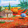 Among The Poppies by Jean-Marc Janiaczyk