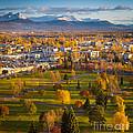 Anchorage Landscape by Inge Johnsson
