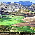 Andalucia Landscape in Spain Print by Artur Bogacki