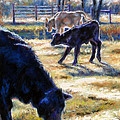 Angus Calves Out With Dad by Denise Horne-Kaplan