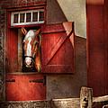 Animal - Horse - Calvins house  Print by Mike Savad