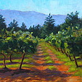 Annadel Shadows by Joyce Delario