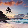 Anse Severe by Michael Breitung