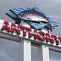 Anthonys Trout Sign by Daniel Hagerman