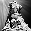Aphrodite Of Milos Styled Sand Castle by Tom Gari Gallery-Three-Photography