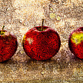 Apple by Bob Orsillo