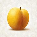 Apricot by Danny Smythe