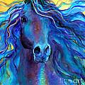Arabian Horse #3  by Svetlana Novikova