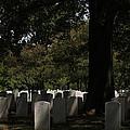 Arlington National Cemetery - 121243 by DC Photographer