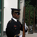 Arlington National Cemetery - Tomb Of The Unknown Soldier - 12122 by DC Photographer