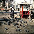 Asakusa Street Scene 2 Print by The  Vault - Jennifer Rondinelli Reilly