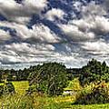 Australian Countryside - Floating Clouds Collage by Kaye Menner