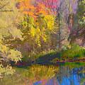 Autumn Beside The Pond by Don Schwartz