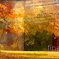Autumn Colors Painterly by Lutz Baar