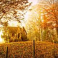 Autumn Cottage Print by Debra and Dave Vanderlaan
