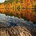Autumn Day by Karol Livote