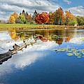 Autumn Farm Pond Print by Bill  Wakeley