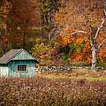 Autumn Getaway Print by Frank Mari