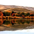 Autumn Glow on the Yakima River Print by Carol Groenen