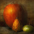 Autumn - Gourd - Melon Family  by Mike Savad