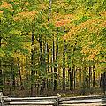 Autumn in Door County Print by Adam Romanowicz