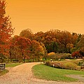 Autumn In The Park - Holmdel Park by Angie Tirado