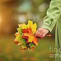 Autumn Print by Konstantin Sutyagin