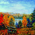 Autumn Landscape Quebec Red Maples And Blue Spruce Trees by Carole Spandau