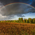 Autumn Rainbow Print by Erik Brede