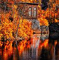 Autumn Reflections  by Bob Orsillo