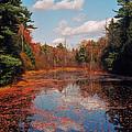 Autumn Reflections by Joann Vitali
