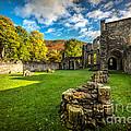 Autumn Ruins by Adrian Evans