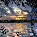 Autumn Sky by Stelios Kleanthous