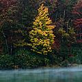 Autumn Splendor by Shane Holsclaw