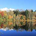Weyerhaeuser Corporation Headquarters Lake in Autumn
