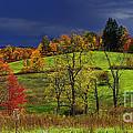 Autumn Storm by Thomas R Fletcher