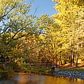 Autumn's Golden Pond by Kim Hojnacki