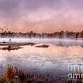 Autumns Light by Darren Fisher